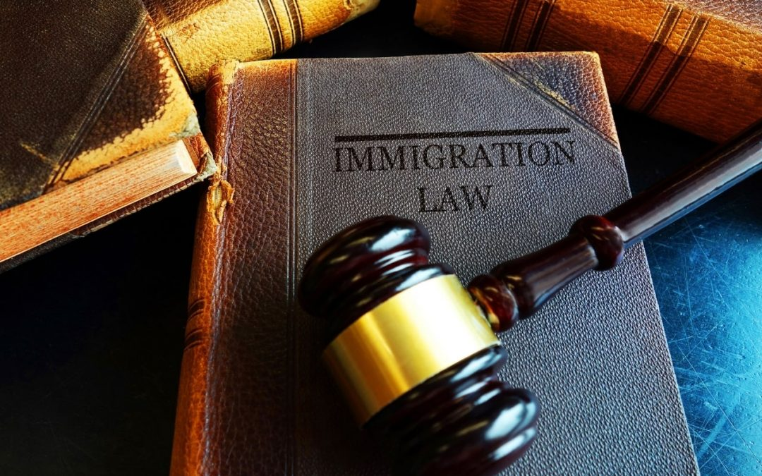 Navigate Complex Immigration Processes with an Immigration Solicitor